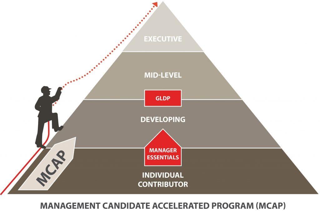 MCAP Pyramid